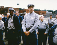 This is an image of 263166 The Shawshank Redemption Photograph & Poster