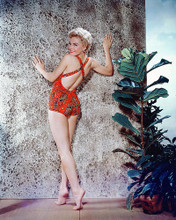 This is an image of 265109 Sheree North Photograph & Poster