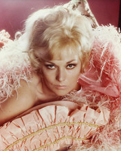 This is an image of 265625 Kim Novak Photograph & Poster