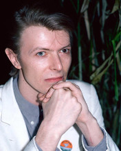 This is an image of 266278 David Bowie Photograph & Poster