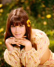 This is an image of 265888 Barbi Benton Photograph & Poster