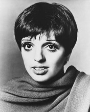 This is an image of 179871 Liza Minnelli Photograph & Poster