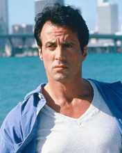 This is an image of 267142 Sylvester Stallone Photograph & Poster