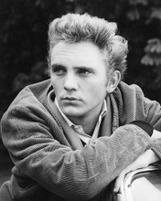 This is an image of 180251 Terence Stamp Photograph & Poster