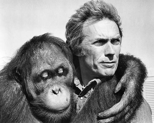 This is an image of 194386 Clint Eastwood Photograph & Poster