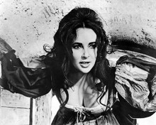 This is an image of 194408 Elizabeth Taylor Photograph & Poster