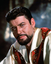 This is an image of 283793 Captain Sinbad Photograph & Poster