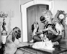 This is an image of 195608 Donna Douglas Photograph & Poster