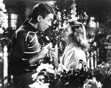 This is an image of 193670 Its a Wonderful Life Photograph & Poster