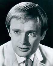 This is an image of 190100 David McCallum Photograph & Poster