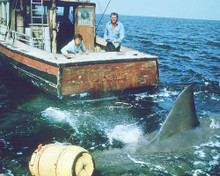 This is an image of 269128 Jaws Photograph & Poster