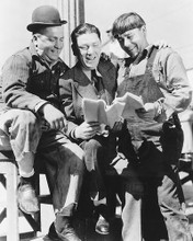 This is an image of 172584 The Three Stooges Photograph & Poster