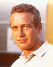 This is an image of 255396 Paul Newman Photograph & Poster