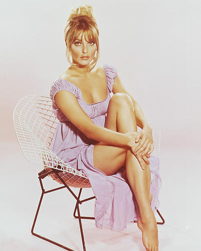 This is an image of 238566 Sharon Tate Photograph & Poster