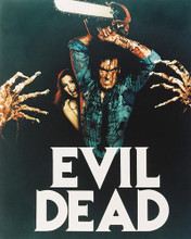 This is an image of 235012 The Evil Dead Photograph & Poster