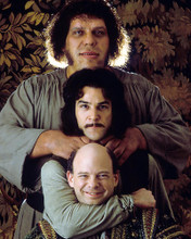 This is an image of Photograph & Poster of The Princess Bride 284212