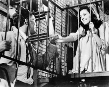 This is an image of Photograph & Poster of West Side Story 194680