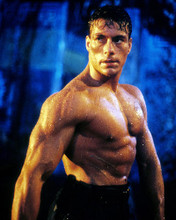 This is an image of Photograph & Poster of Jean-Claude Van Damme 284474
