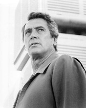 This is an image of Photograph & Poster of Rock Hudson 195006