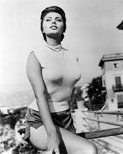 This is an image of Photograph & Poster of Sophia Loren 195109