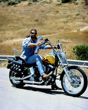 This is an image of Photograph & Poster of Lorenzo Lamas 284618