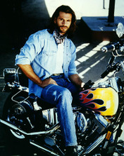 This is an image of Photograph & Poster of Lorenzo Lamas 284619