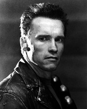 This is an image of Photograph & Poster of Arnold Schwarzenegger 195167