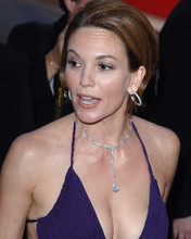 This is an image of Photograph & Poster of Diane Lane 284633