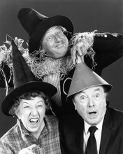 This is an image of Photograph & Poster of The Wizard of Oz 195219