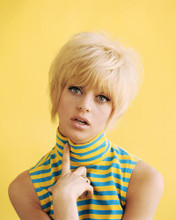 This is an image of Photograph & Poster of Goldie Hawn 284893