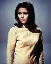 This is an image of Photograph & Poster of Diana Rigg 285041