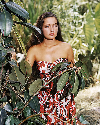 This is an image of Photograph & Poster of Dorothy Lamour 285096