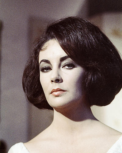 This is an image of Photograph & Poster of Elizabeth Taylor 285360