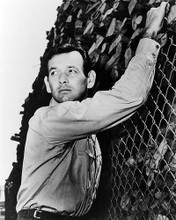 This is an image of Photograph & Poster of David Janssen 195753