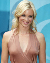This is an image of Photograph & Poster of Amy Smart 285389