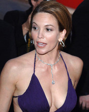 This is an image of Photograph & Poster of Diane Lane 285429