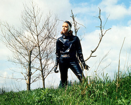 This is an image of Photograph & Poster of Diana Rigg 290775