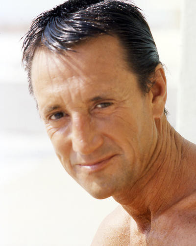 This is an image of Photograph & Poster of Roy Scheider 290780