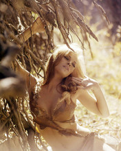 This is an image of Photograph & Poster of Raquel Welch 290872