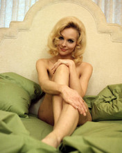 This is an image of Photograph & Poster of Diane McBain 291018