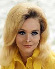 This is an image of Photograph & Poster of Diane McBain 291064