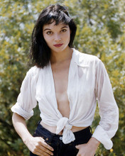 This is an image of Photograph & Poster of Elsa Martinelli 291070