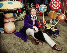 This is an image of Photograph & Poster of Willy Wonka and the Chocolate Factory 291485