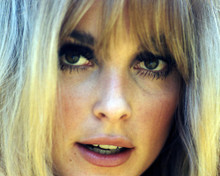 This is an image of Photograph & Poster of Sharon Tate 291201