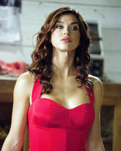This is an image of Photograph & Poster of Adrianne Palicki 291252