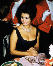 This is an image of Photograph & Poster of Sophia Loren 291330
