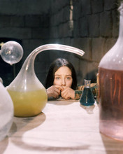 This is an image of Photograph & Poster of Olivia Hussey 291333