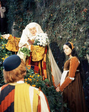 This is an image of Photograph & Poster of Romeo and Juliet 291364