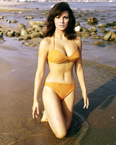 This is an image of Photograph & Poster of Raquel Welch 291402