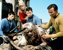 This is an image of Photograph & Poster of Star Trek 291691